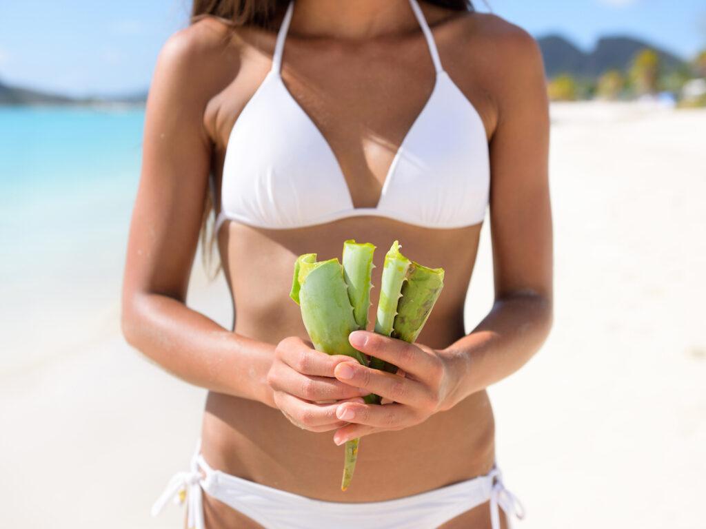 Aloe ferox menopausa